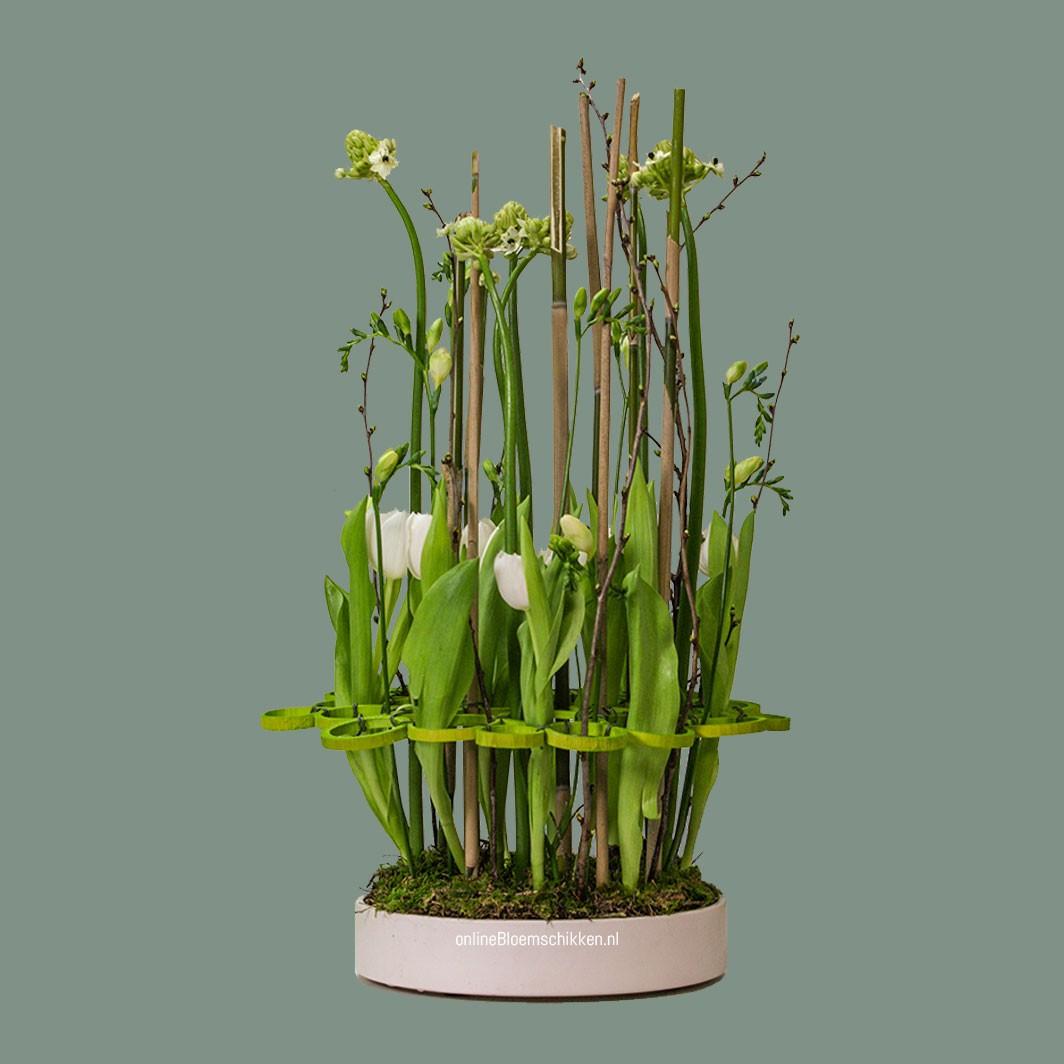 IB-042 | Schaalarrangement - met tulpen en ringen