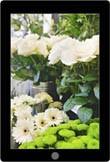 Het verzorgen van snijbloemen in de bloemenwinkel