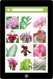 Assortimentskennis kamerplanten (app)