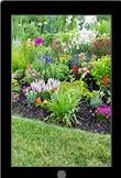 13. Tuinbeplanting, vijvers en tuinmaterialen - verzorging