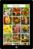 07. Assortimentskennis bloembollen (app)